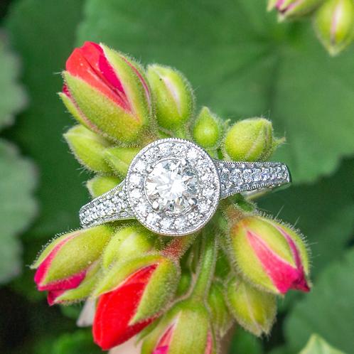 Alexa Diamond & Platinum Ring