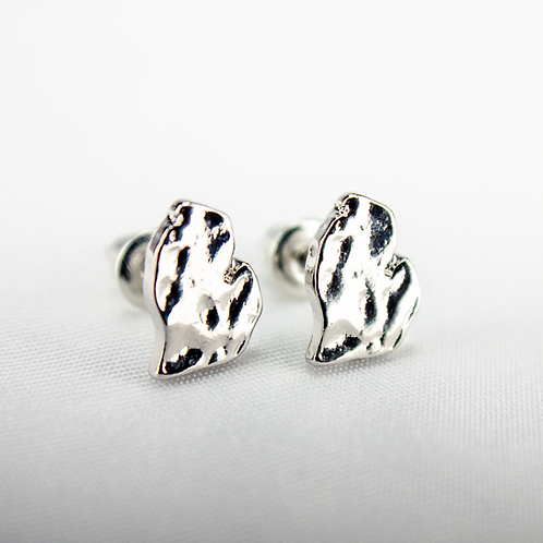 Stainless Steel LP Michigan Post Earrings