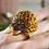 Thumbnail: Lion Citrine Ring