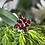 Thumbnail: Garnet Blossom Ring