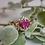 Thumbnail: Yvette Ruby Ring
