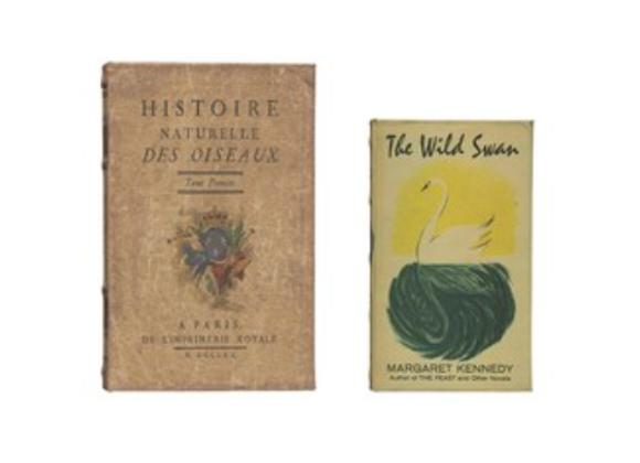 """Histoire Naturelle"" Canvas Book Box S/2"