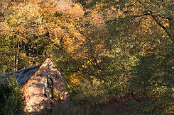 autumn-house-in-the-forest.jpg