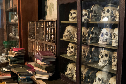 The Curious Life and Death of