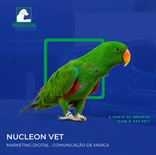 Nucleon Vet