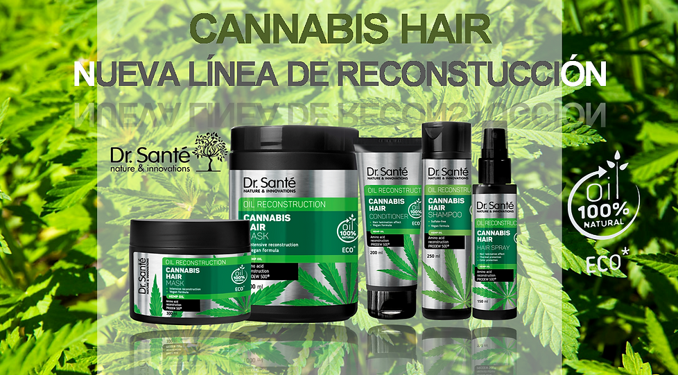 PRODUCTOS CANNABIS.png