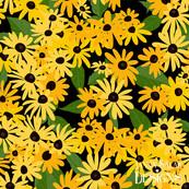 Black-eyed Susan Floral