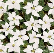 White Poinsettia Winter Floral