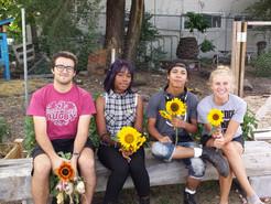 Sam's Summer Internship Experience