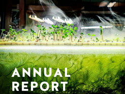 Plant Chicago Annual Report 2019