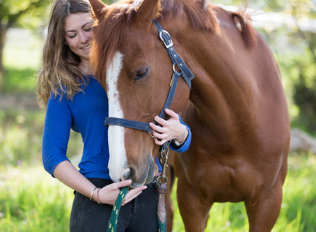 HOW CHANGING YOUR EXPECTATIONS WILL MAKE YOU A BETTER EQUESTRIAN