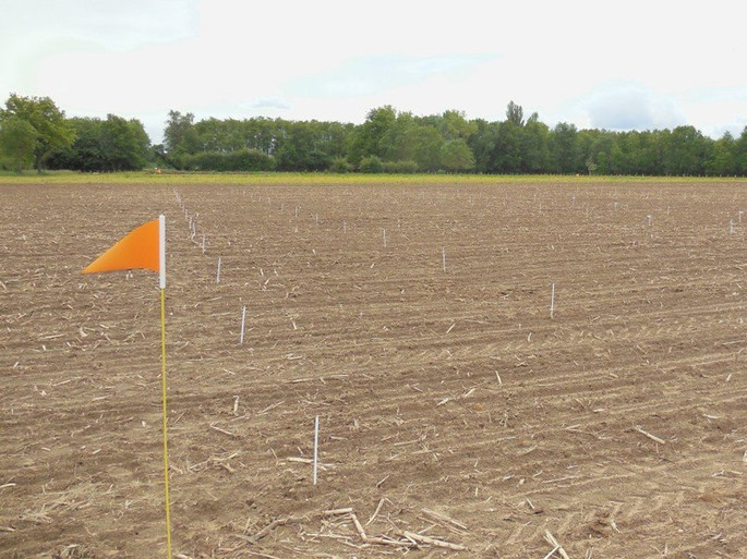 fanions agricoles