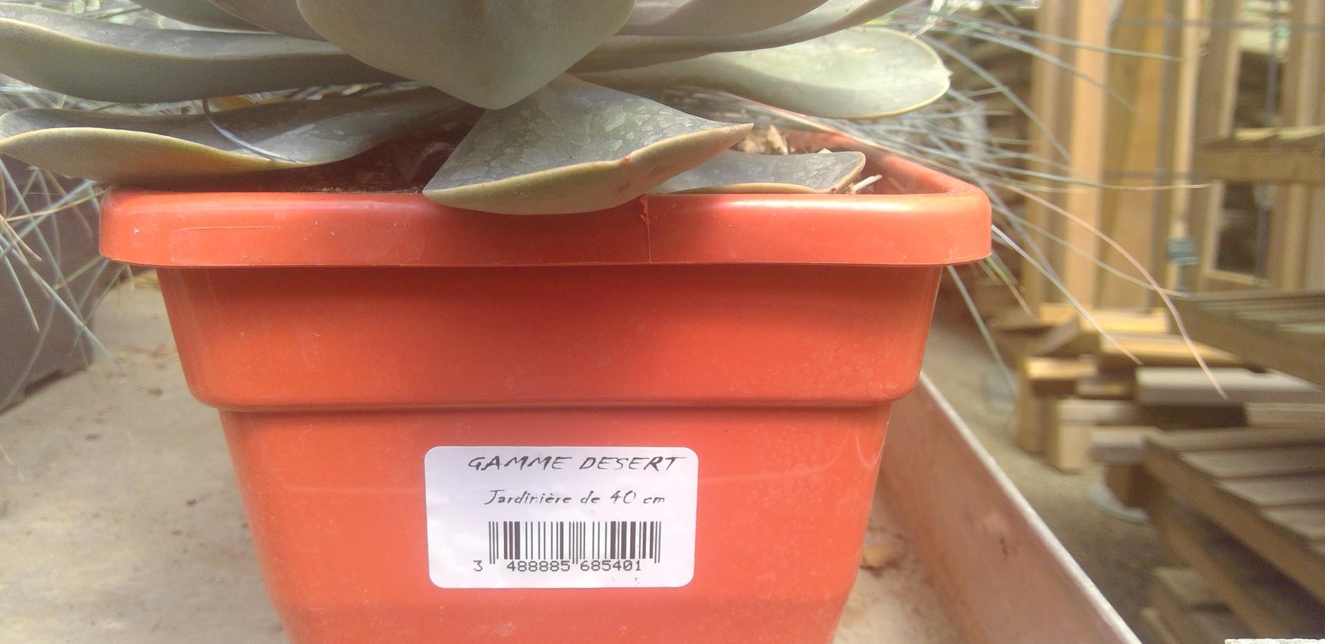 étiquette horticole adhésive