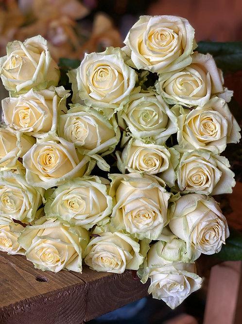 White Naomi roses 70cm