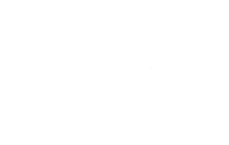 DoubleClick Solutions Hosted Cloud Services Logo
