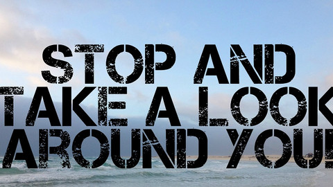 Look Around You!