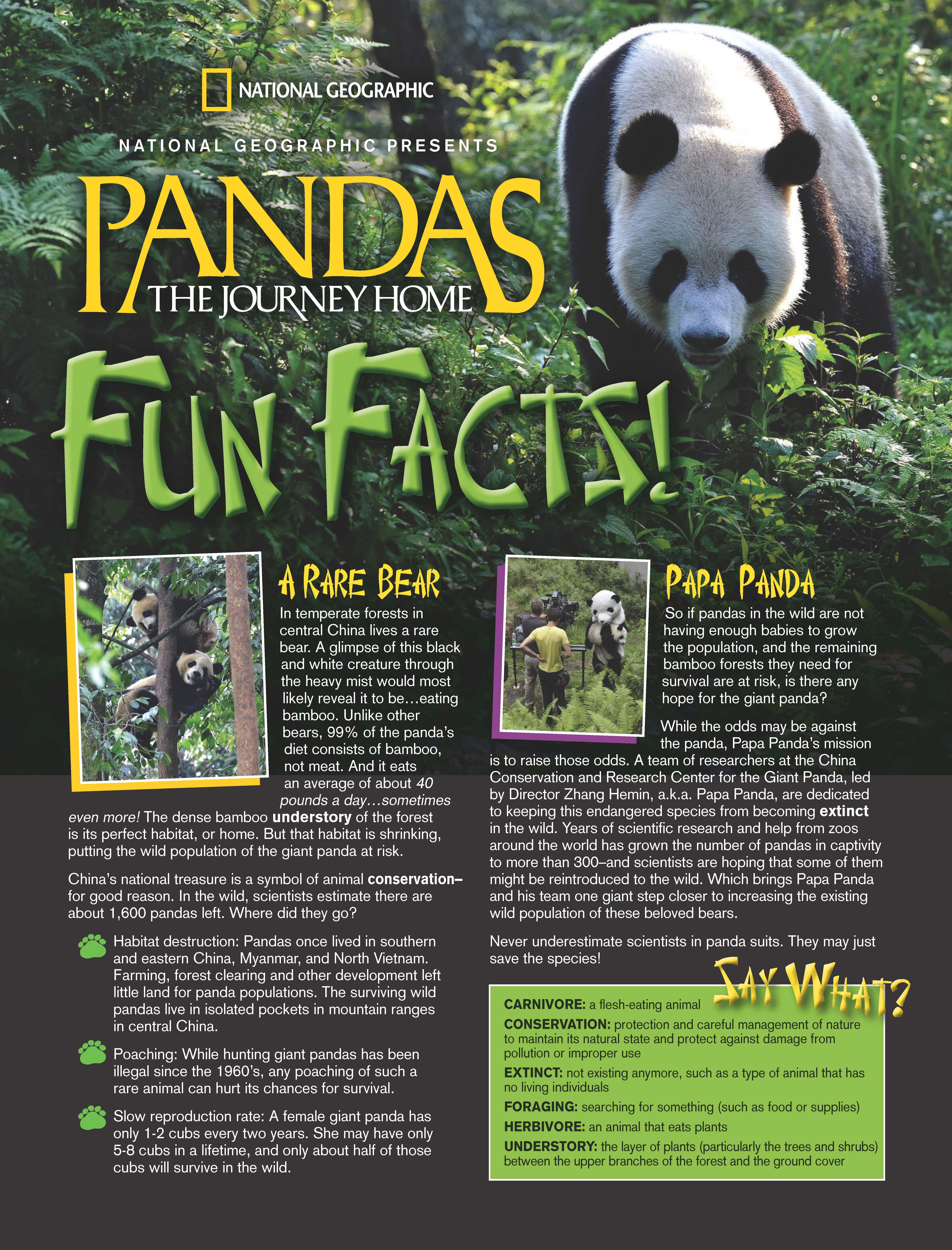 Pandas3D.image_Page_1