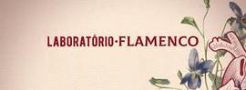 Laboratório Flamenco