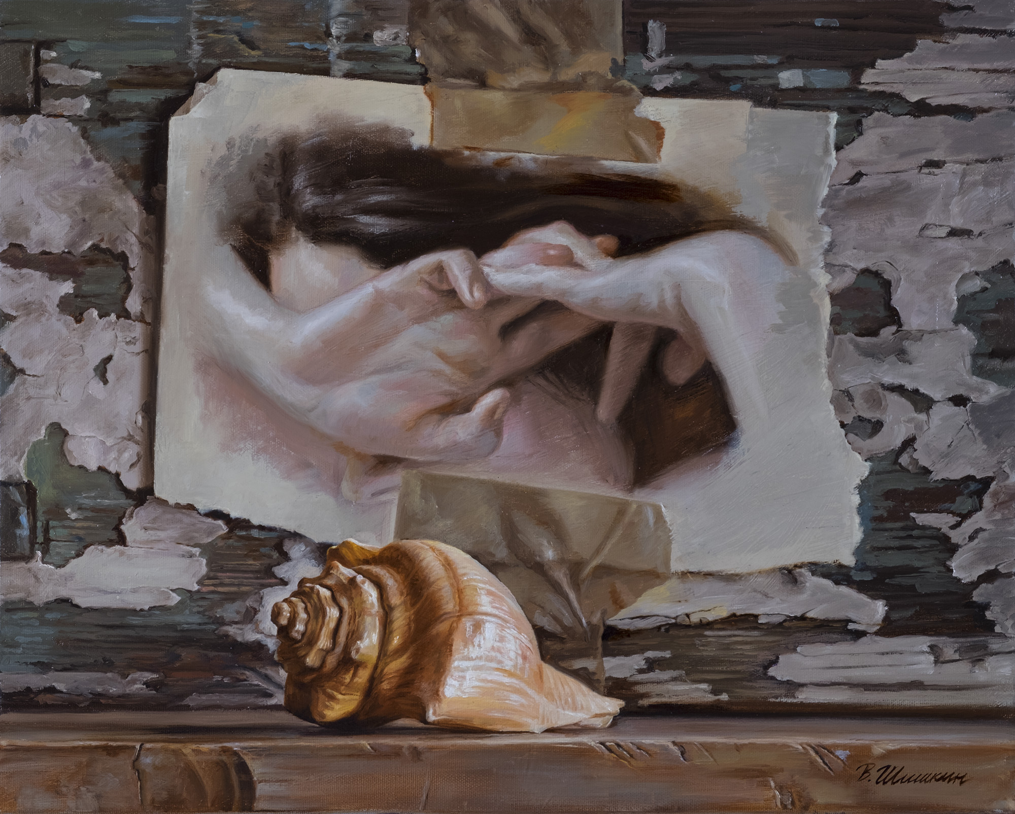 Still life with shell