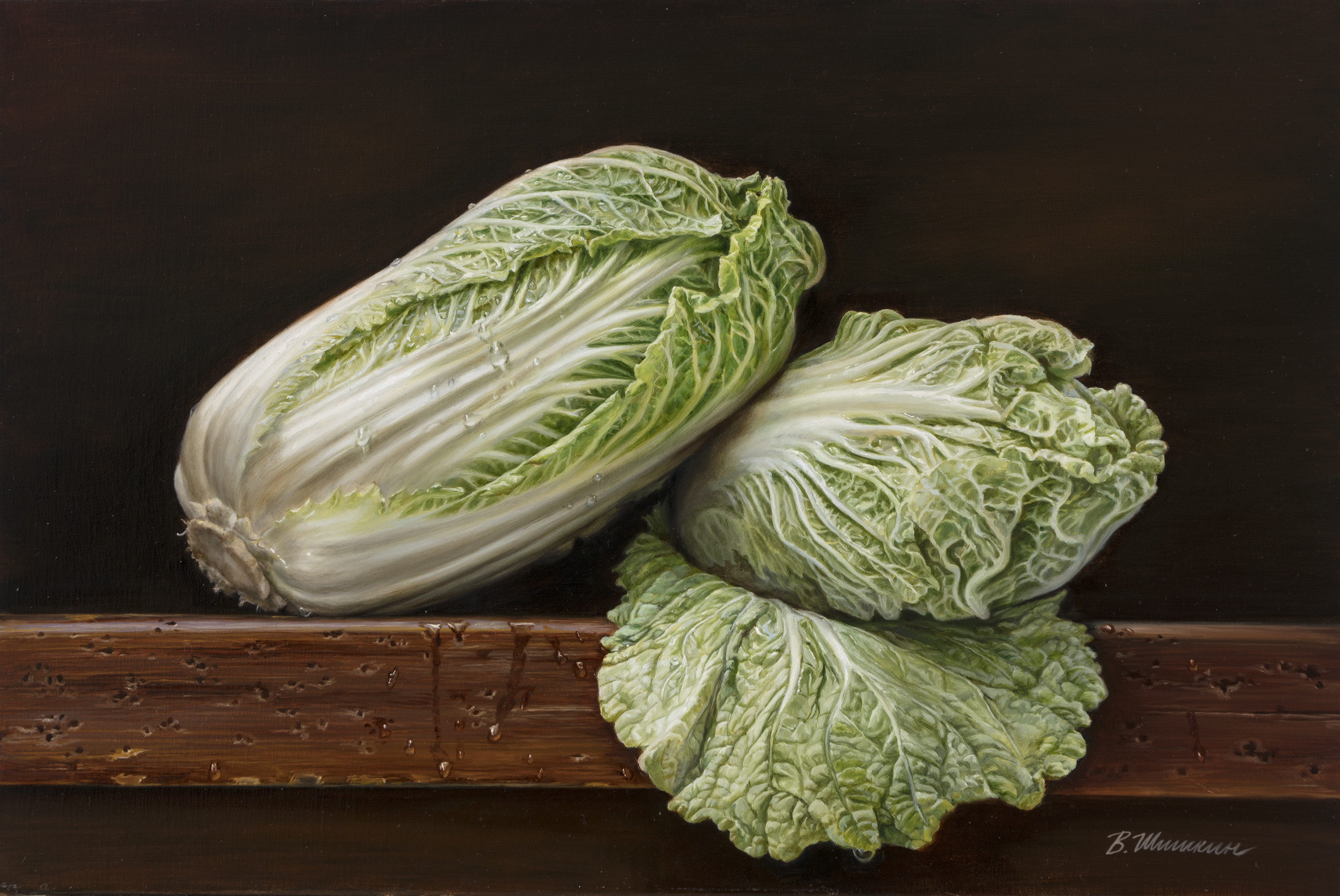 Chinese cabbage2