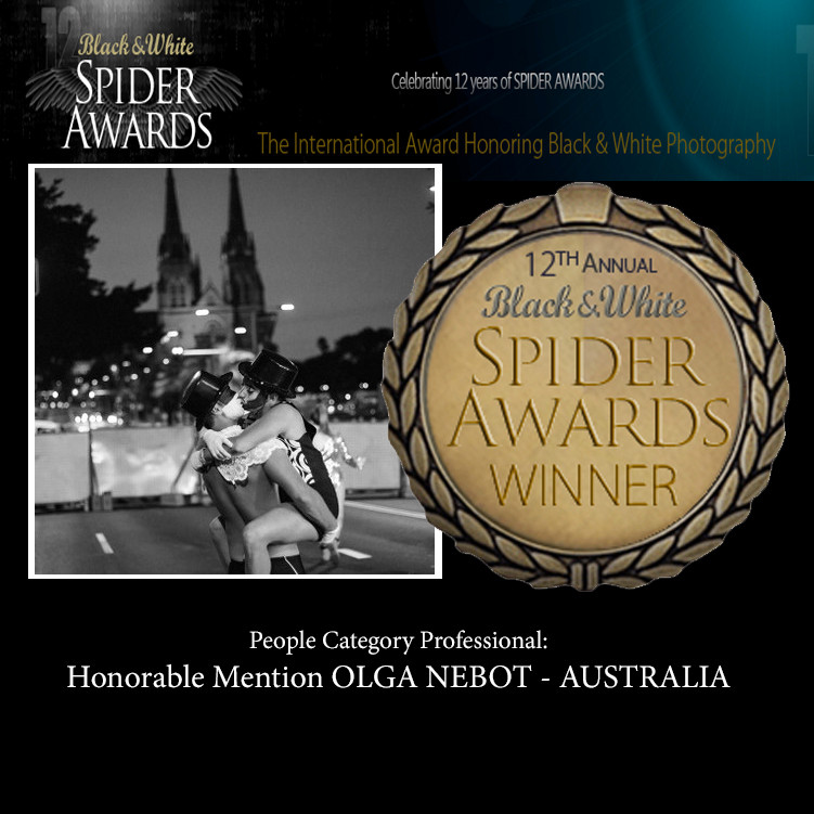 Honorable Mention B&W Spiders Awards