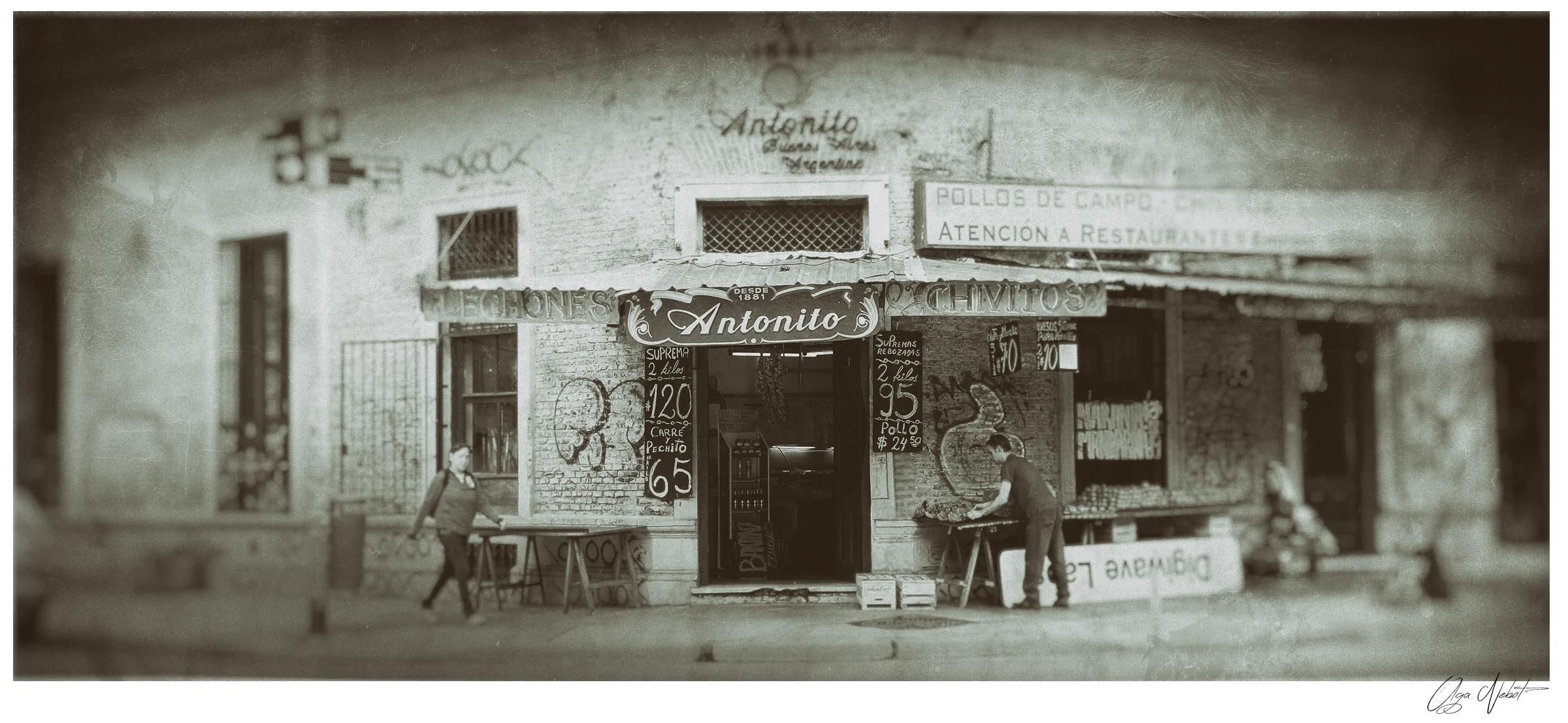 Palermo neighbourhood