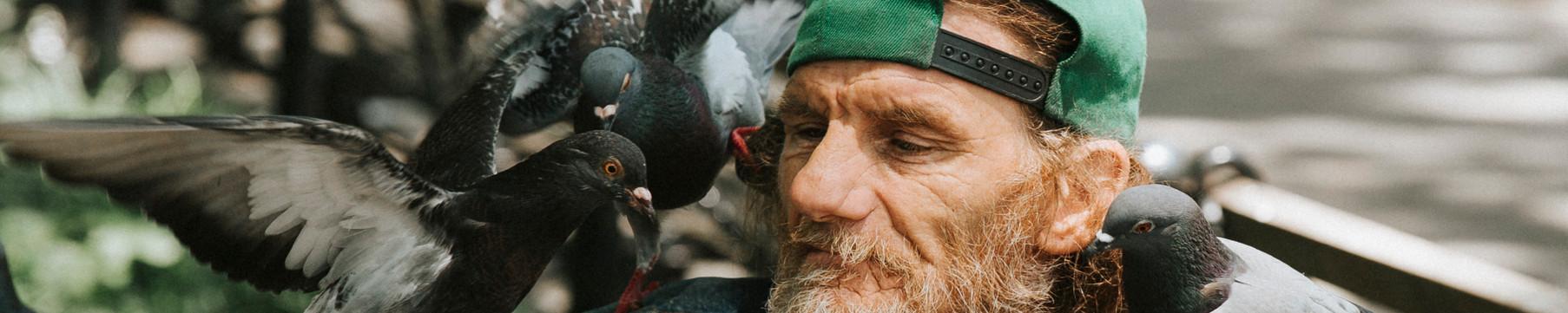 Harry the Birdman