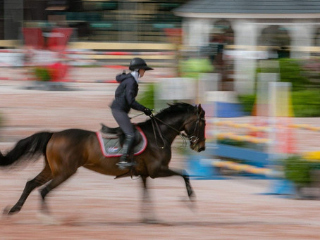 Why even more equestrian competitors are expected at this winter's events in Wellington