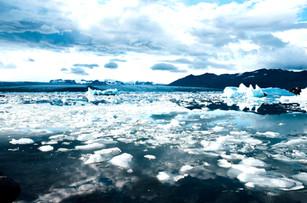 ¡Salvemos el Ártico!
