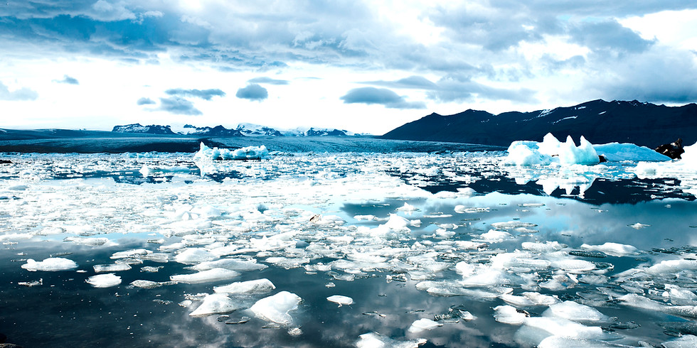 Tidewater Glaciers - harbingers of climate & ecosystem changes