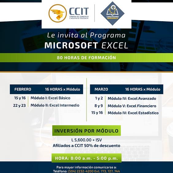 Programa Microsoft Excel  (1)