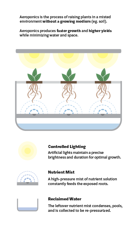 Harvest Nation - Aeroponics - Diagram.pn