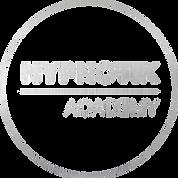 Logo academy Gris.png