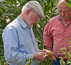 מייסד חברת בוב'ס רד מיל בודק את התוצרת החקלאית