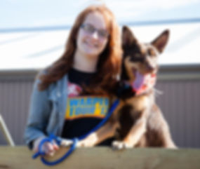 Dog groomer Adelaide