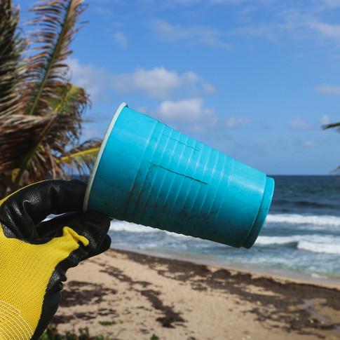 Plastic Solo Cup