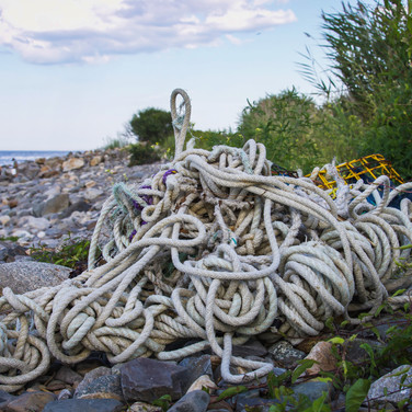 Discarded fishing gears