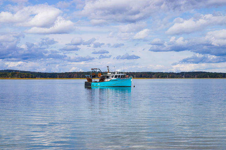 Trawl Fishing Vessel