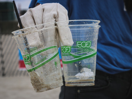 Why 'Biodegradable Plastics' Are Misleading Us