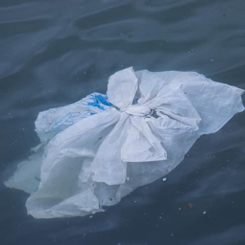 Single-Use Plastic Bag