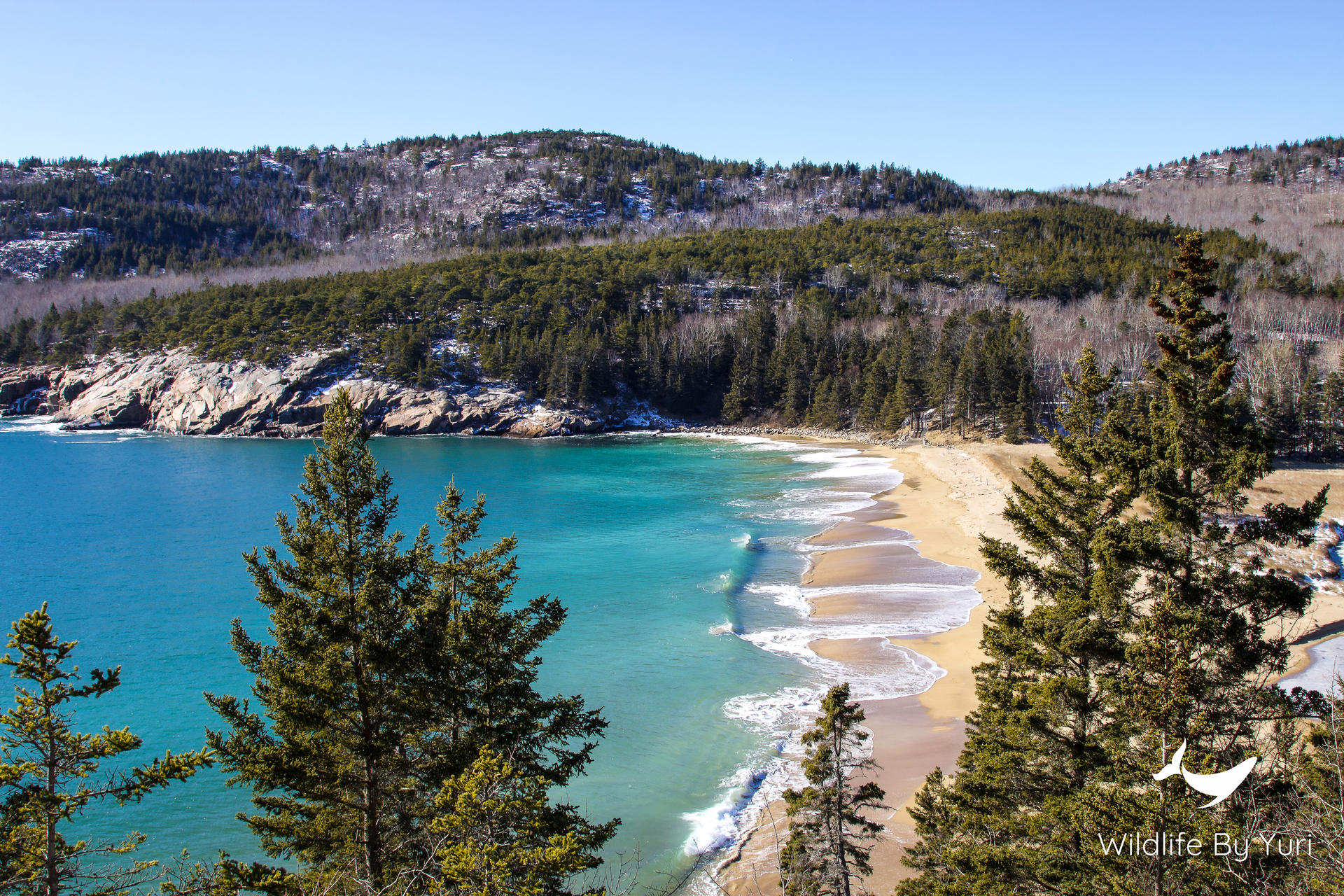 Sandy Beach, Acadia National Park