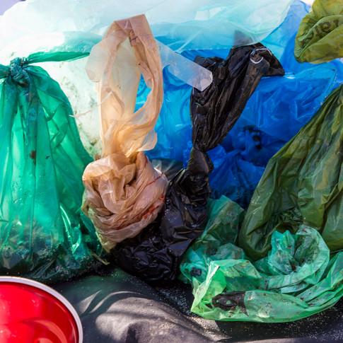 Plastic Dog Poop Bags
