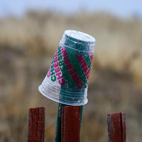 Plastic Iced Coffee Cup