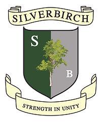 Silverbirch tree.jpg