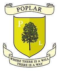 Poplar tree.jpg