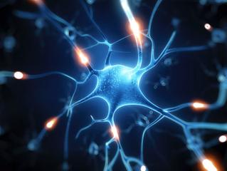 """Здравната Система е основана на неправилно Биологично Уравнение .... Програмата """"Нова Клетка&qu"""