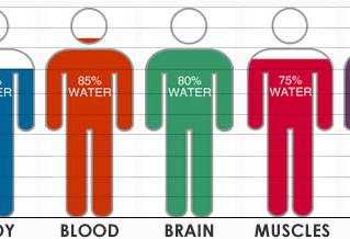 Още за водата на тялото ...