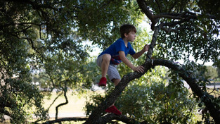 Subir em árvores: a importância das brincadeiras simples