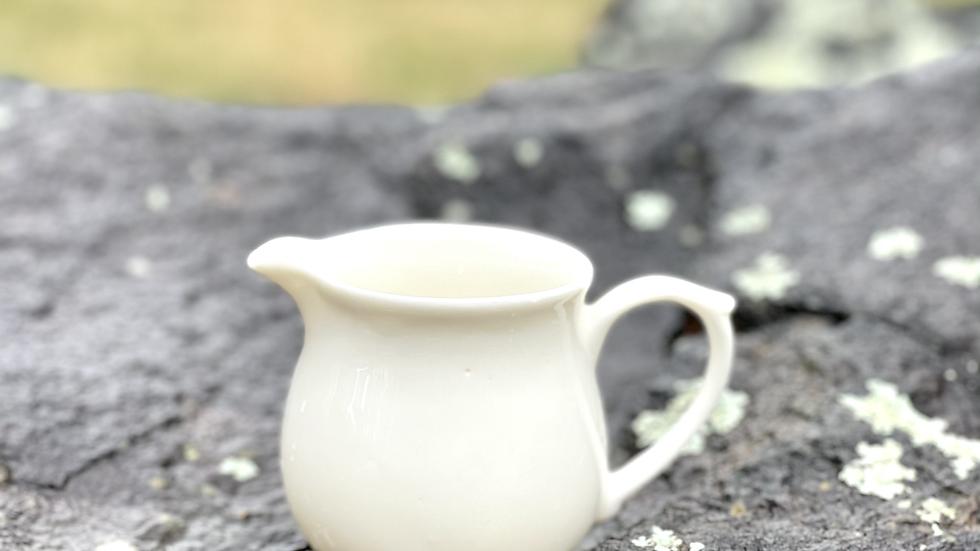 White Tea Pitcher | GuanDanBei | Fairness Cup