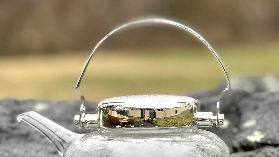 Cold Brew Teapot